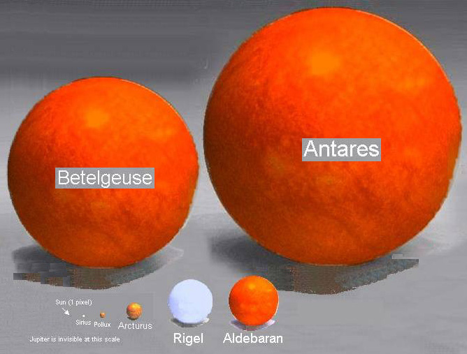 image showing relative size of sun to supegiant stars Antares and Betelgeuse